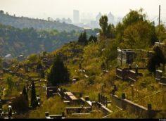 В Алматы задержали работников кладбища, которые завышали цену за погребение
