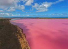 Розовое озеро Кобейтуз оказалось не лечебным, а опасным для здоровья