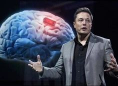Илон Маск сообщил об успешной имплантации чипов Neuralink в мозг свиньи