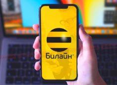 Как на Билайне узнать свой номер в Казахстане?