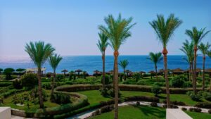 Туры в Египет из Калининграда