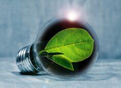 Миру больше не нужны новые нефтегазовые проекты на пути к нулевым выбросам к 2050