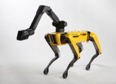 Роботы-собаки Boston Dynamics танцуют под музыку, видео