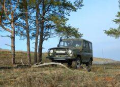 10 лет колонии дали водителю, сбившему четырех школьниц в Алматинской области